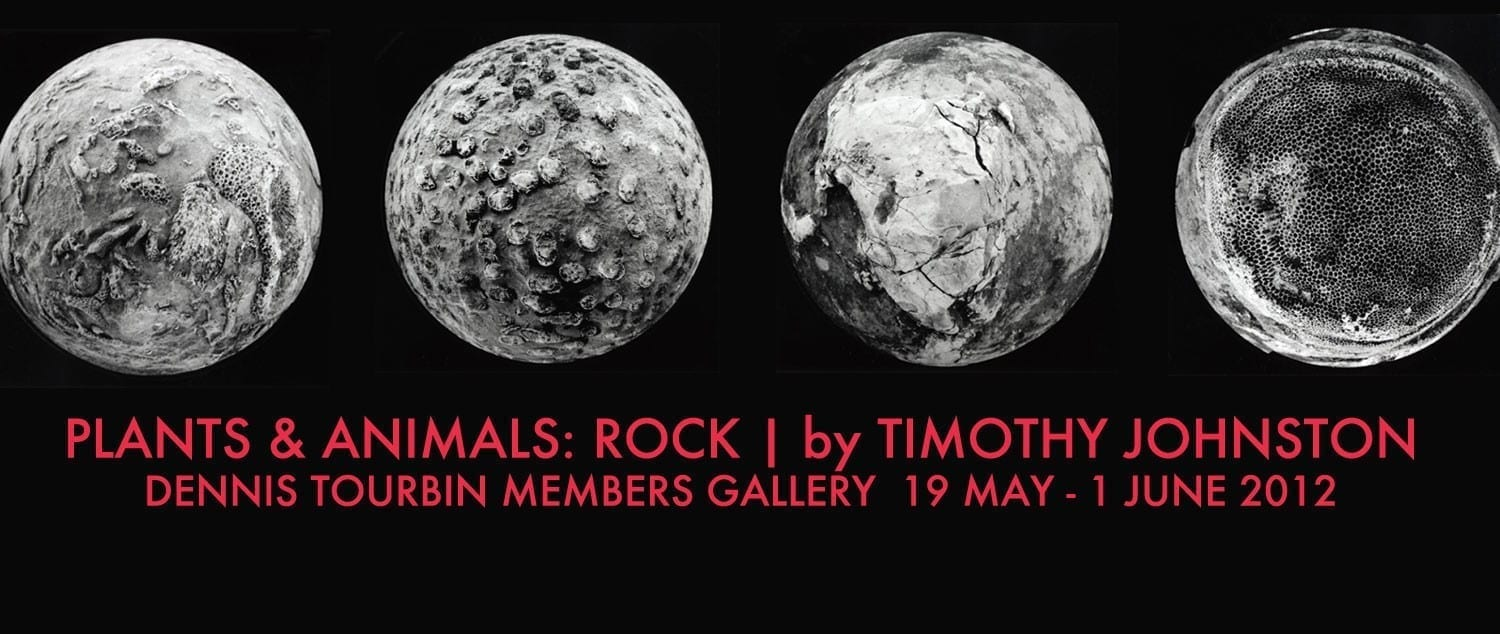 Plants and Animals: Rock
